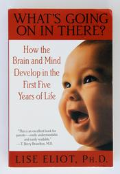 What's Going On In There? How the Brand and Mind Develop in the First Five Years of Life